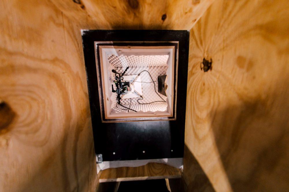 Ursula Damm: Blick in die Fliegenbox der Installation (2019). Foto: Rytis Seskaitis.