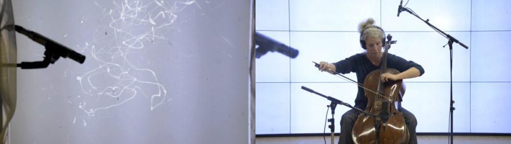 Ursula Damm: Simultaneous performance of mosquito and chello player (2017). Photo: Ursula Damm.